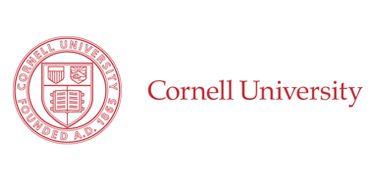 Endowed Professorship, Urban Tech (Cornell University)
